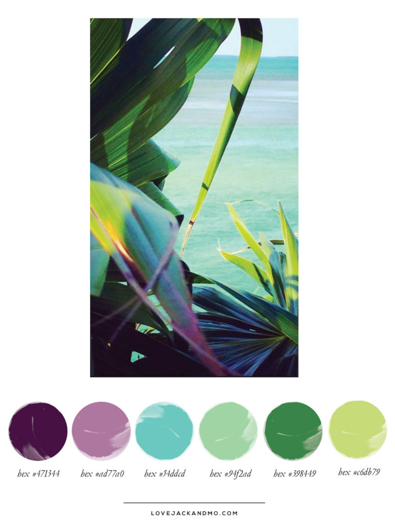 Tropical Paradise, Color Palette Inspiration