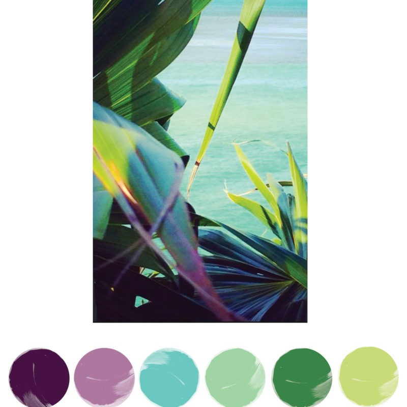 Tropical Paradise, Color Palette Inspiration